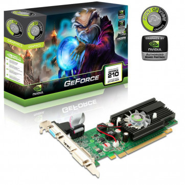 GeForce 210 1024MB